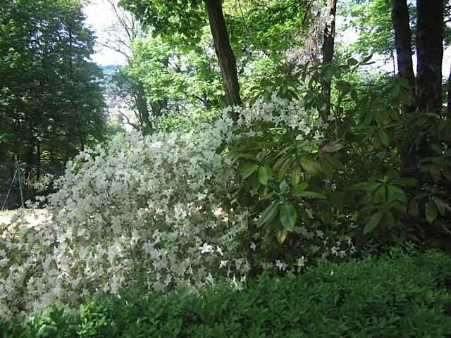 Jardins de l'Imaginaire - Périgord
