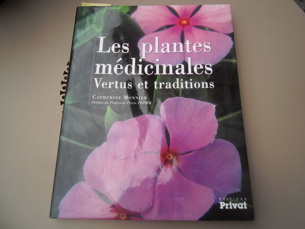 Plantes et vertus (10)