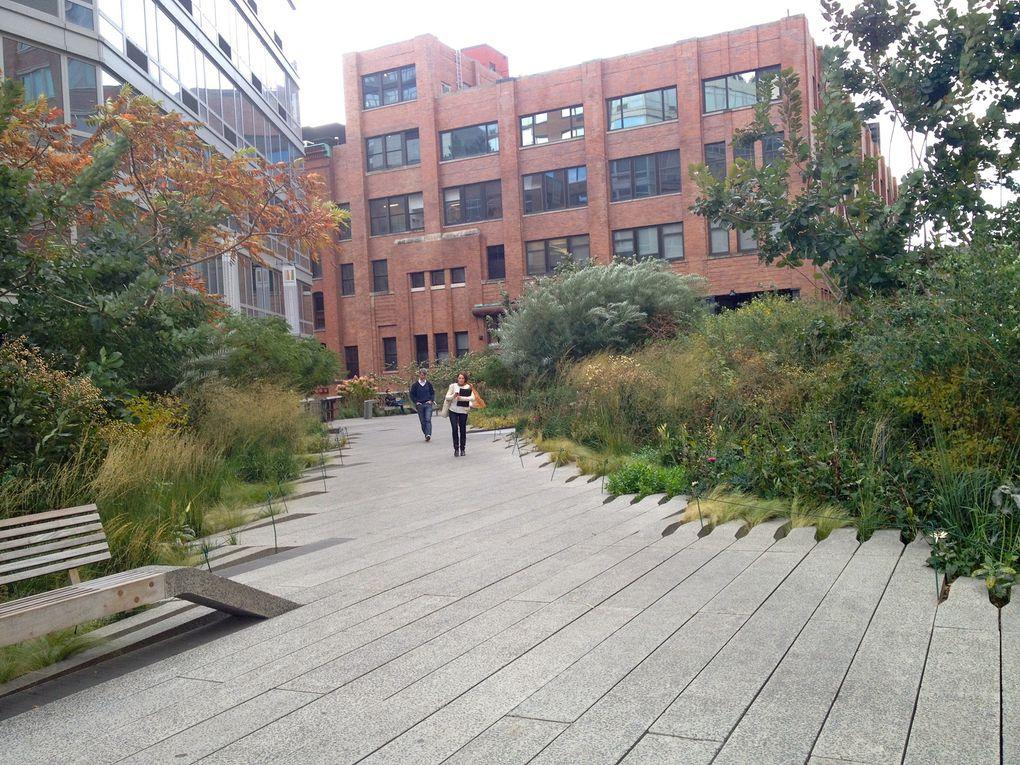 Graminées sur la High Line à New York - Octobre 2014 (6 photos)