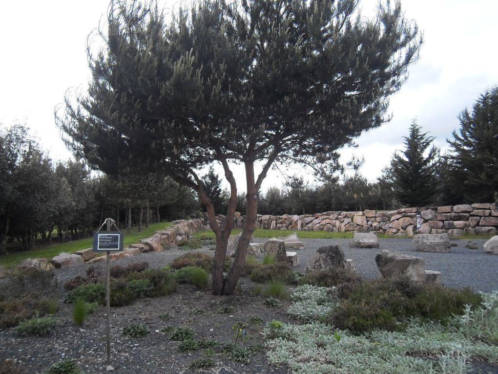 6 photos du Jardin Breton