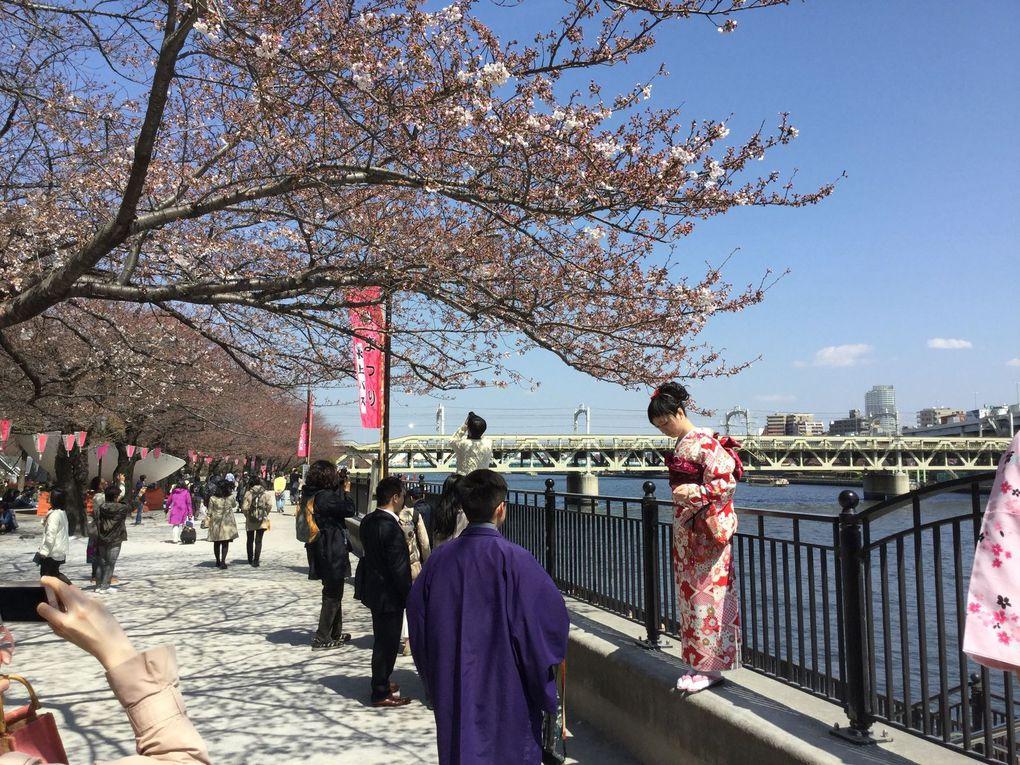 Ueno Park - 6 photos