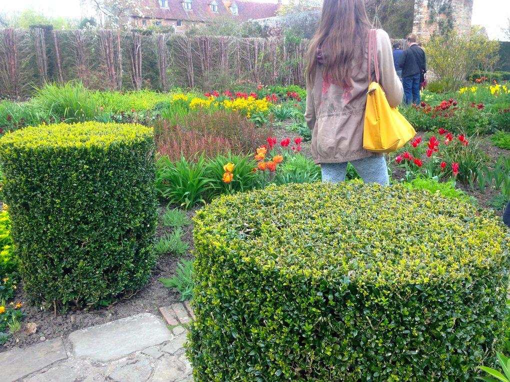 The Cottage Garden - 3 photos