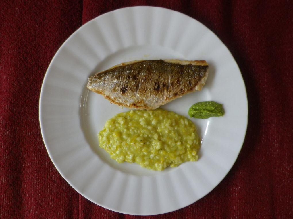 Huîtres du bassin d'Arcachon, daurade/risotto au pesto d'herbe et d'orange, sorbet poire/confit de vin épicé.