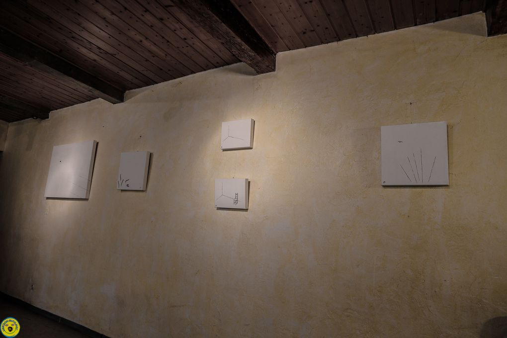 Thorame Basse  : &quot&#x3B;Perspectives brutes&quot&#x3B;,  &quot&#x3B;Questionner la Canadienne&quot&#x3B; rencontre avec Andrée Bélanger artiste multidisciplinaire