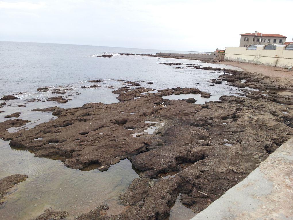 la marée basse à Livorno