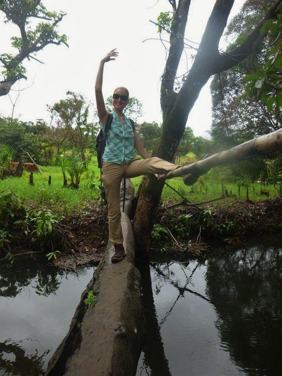 Voyage de Marine en Guinée : des îles de Loos à la Dame de Mali
