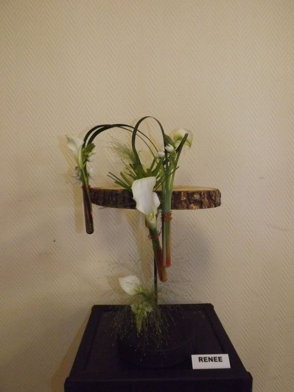 Rondins de bois, ornithogale, arum calla, panicum, papyrus, lilly-grass