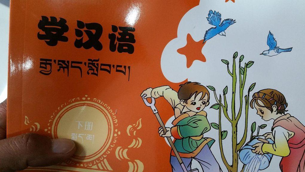Plus de 650 livres (certains en Tibétain) achetés à Lhassa !