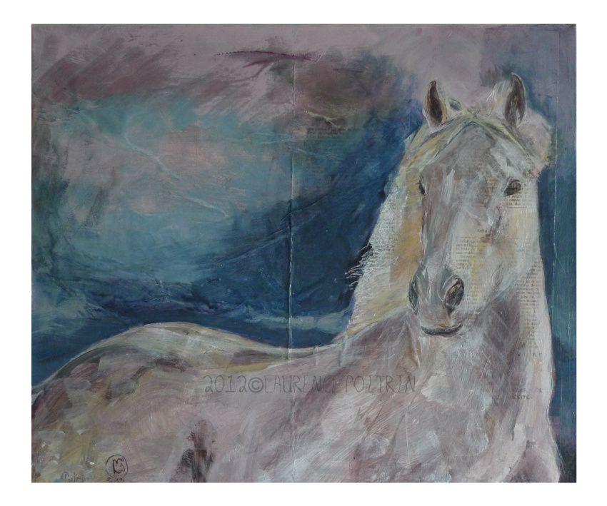Mauvais Temps / Stormy Weather Portrait d'un petit cheval blanc