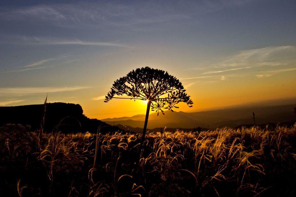 Soleil couchant sur le plateau du Plan des Vaches