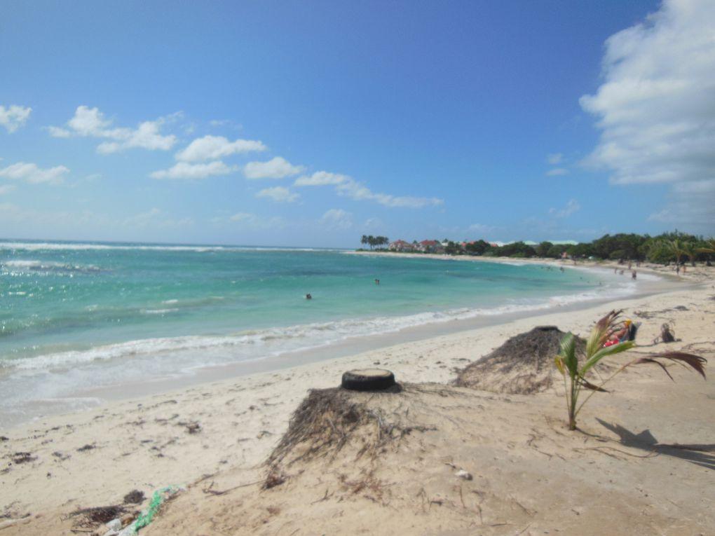 quelques jours en Guadeloupe - 40 ans après