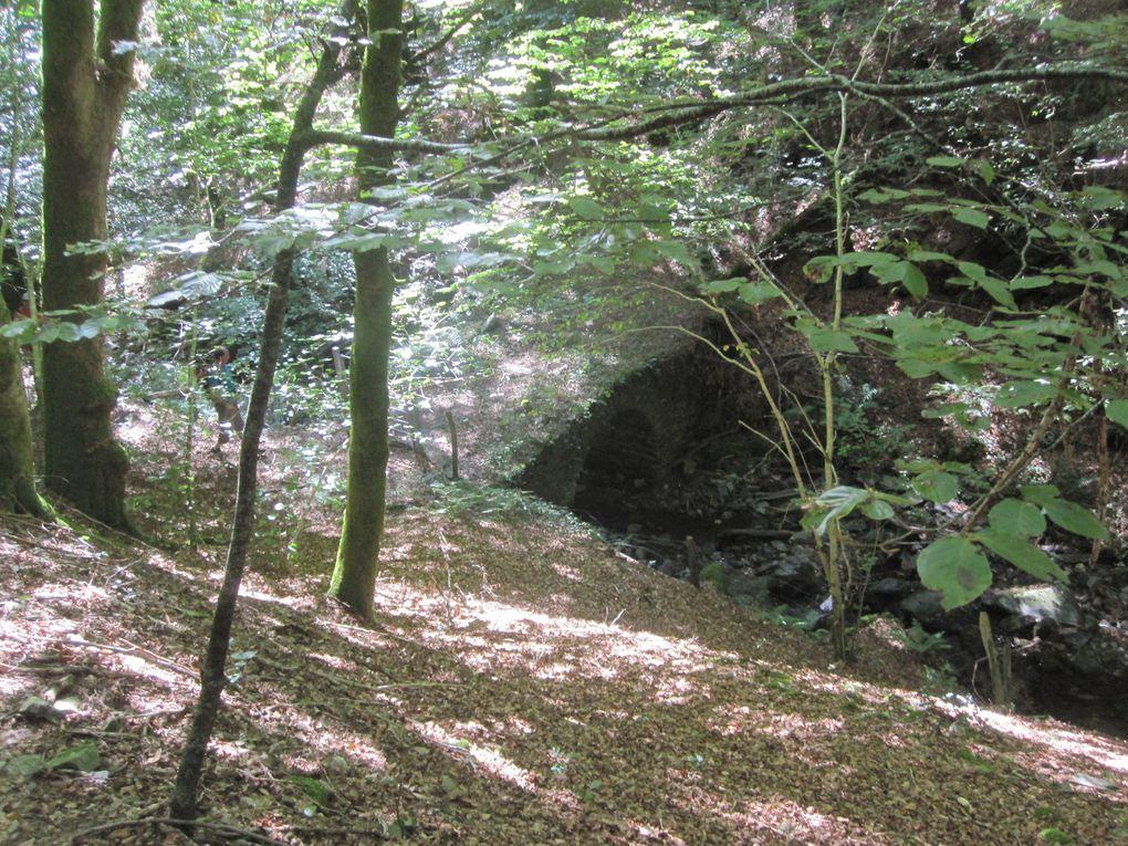 Autour de la Boralde de Saint Chély, le 22 septembre