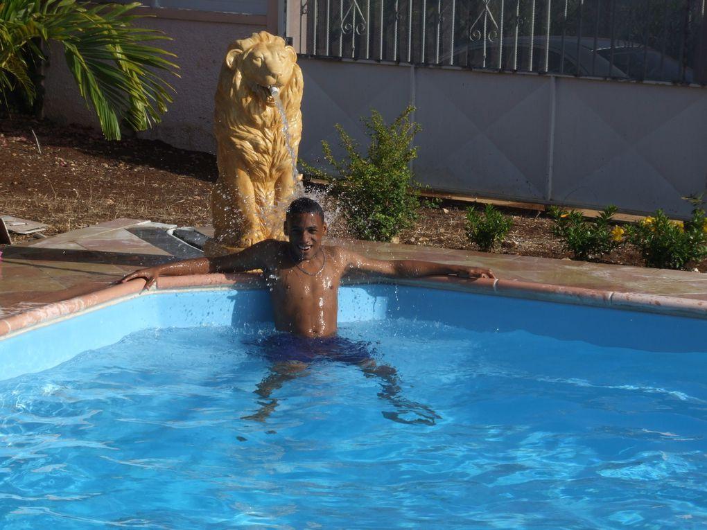 LION( pour jet d'eau)