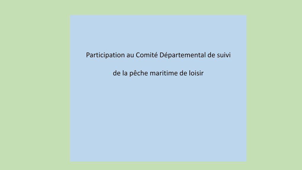 Pêche, Carrelets et Moulinets, une association qui s'engage......