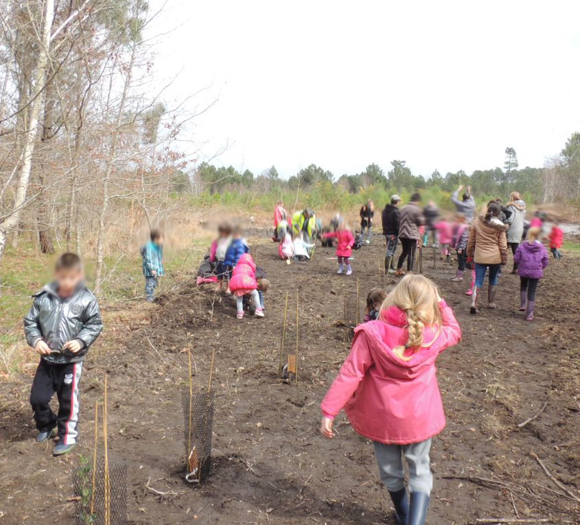 Journée scolaire &quot&#x3B;Au pied de mon arbre&quot&#x3B; le 27 mars