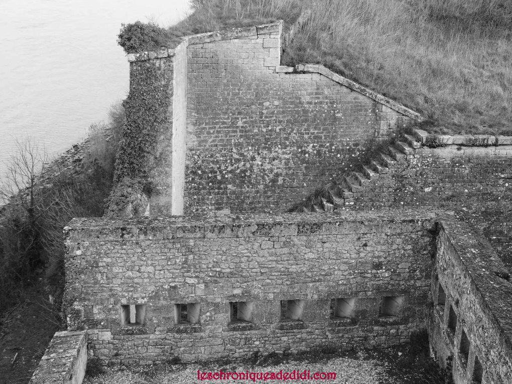 Citadelle (part IV)