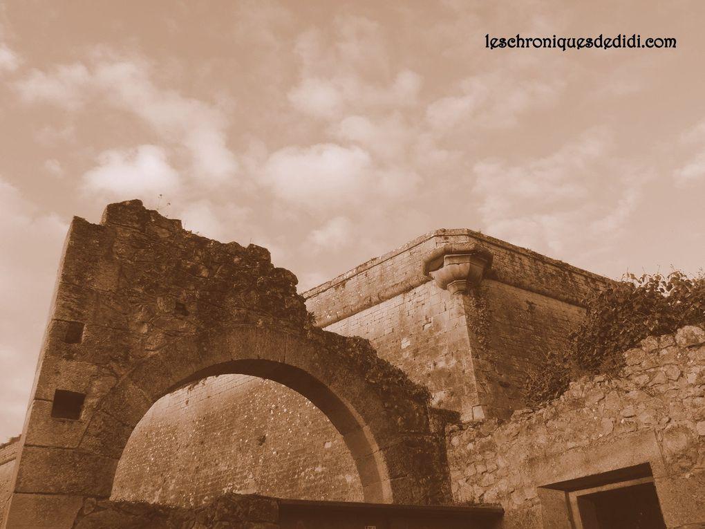 Citadelle (part V)