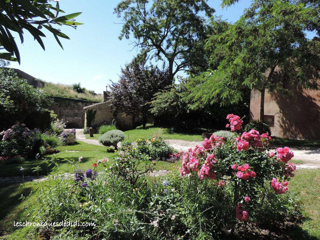 Les fleurs de la citadelle (2)