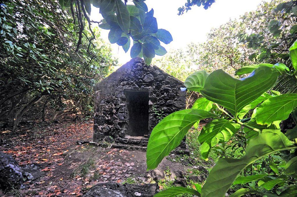 Guadeloupe 2012 : Sentier de Grande Pointe