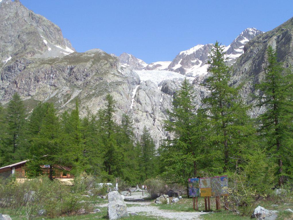 au départ du Pré de Mme Carle (1874m) , montée jusqu'au pied du Glacier Blanc (2250m) avec vue sur la Barre des Ecrins, le Glacier Noir, le Glacier Blanc, le Refuge du Glacier Blanc et le Pelvoux !