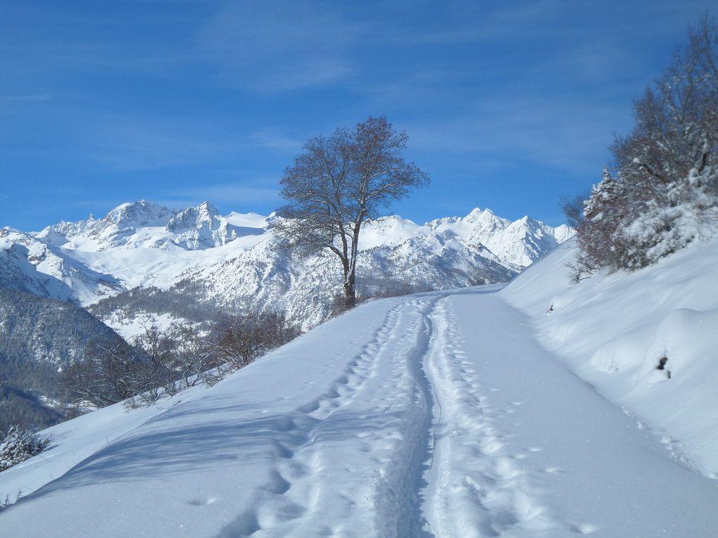 départ de Villard Laté (1500m) et montée à ski de fond jusquau Hameau des Tronchets (1850m) puis poursuite en direction du Col du Granon jusquà l'altitude 2050m un peu avant la Bergerie ! neige froide et grand beau !! l'hiver est enfin bien installé ce 31/01/15 !! Février devrait etre grandiose !!