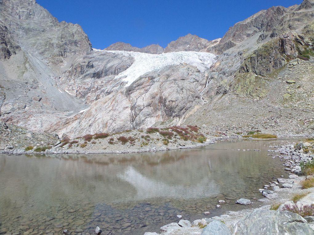 départ du Pré de Mme Carle (1874m) et montée au Refuge du Glacier Blanc (2542m) puis montée jusqu'à la moraine du Glacier Jean Gauthier (2750m) !! superbes conditions en cette fin Aout !!