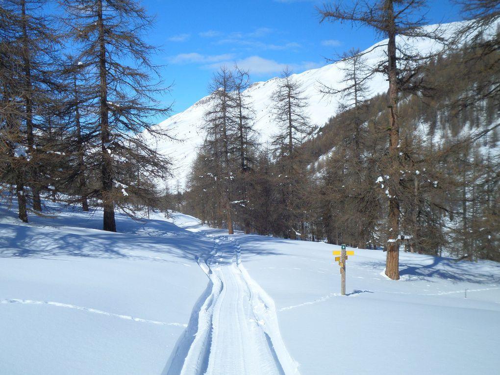 départ de Ceillac (1600m) et montée à ski de fond (avec 1/3 de peaux) sur les Balcons du Cristillan , puis jusqu'à la Bergerie du Bois Noir (2050m) et enfin jusqu'à la Cabane de la Savine (2156m) ! une merveille !