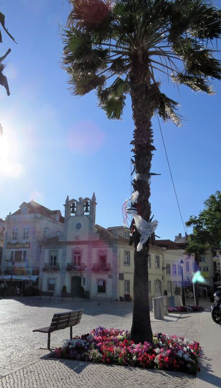 Jour 12 - SINTRA - COTE OCCIDENTALE