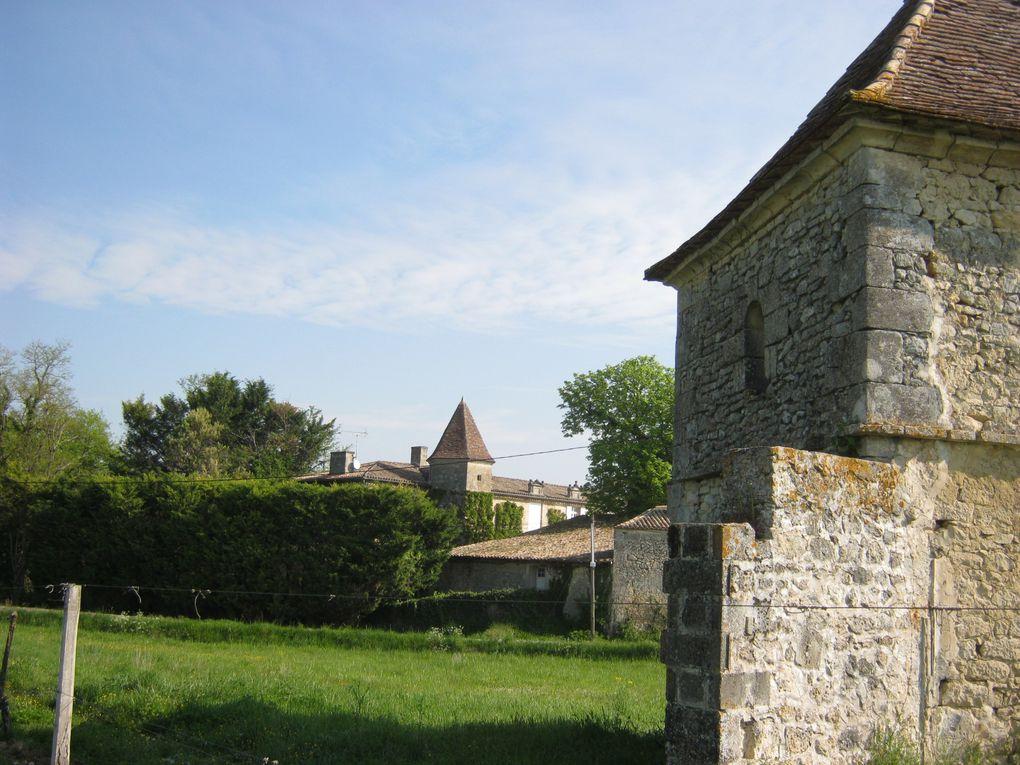 Château Reynier - Château Bouchet