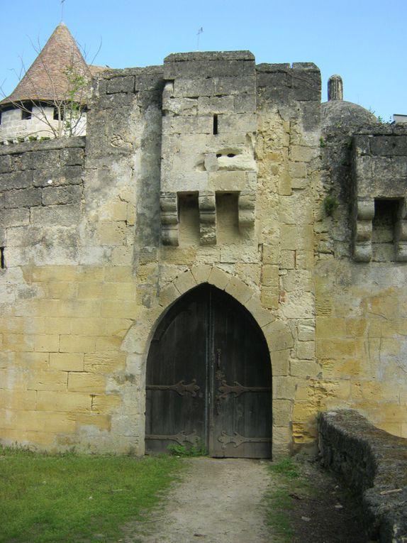 le château et ses dépendances. Sur la 1ère photo derrière la fenêtre 2 braques nous surveillent