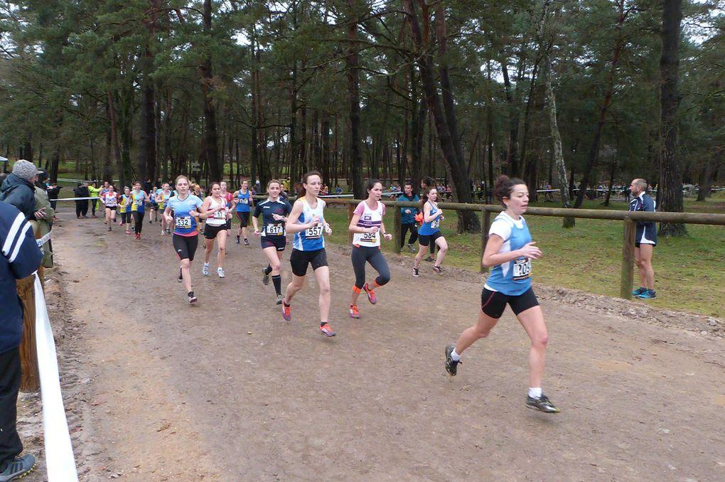Championnats régionaux de cross, Fontainebleau, le 31/01/2016