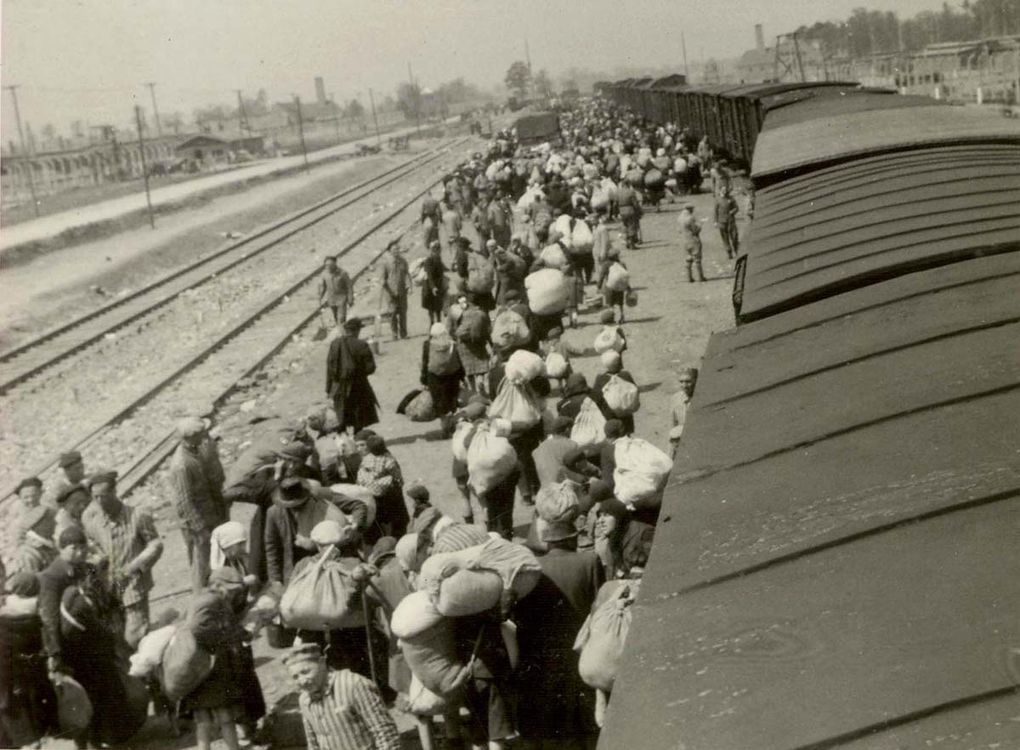 In the photos we see the men, women and children step out of the overcrowded train, traumatized and fearful after their horrendous journey. They have no clue that they have just been delivered to a death factory and that few of them will survive.