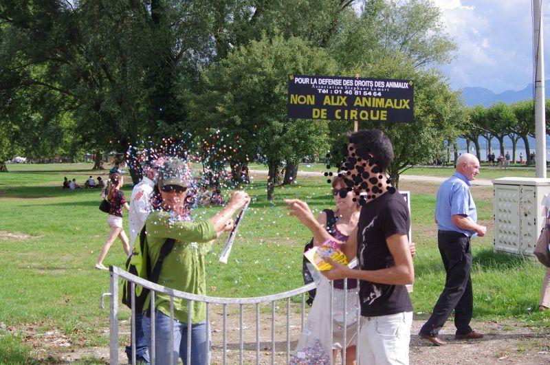 Tournée cirque Médrano 2014
