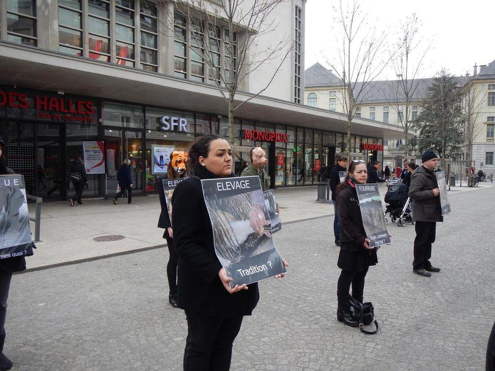 Bravo aux militants de Justice pour les Animaux-Savoie