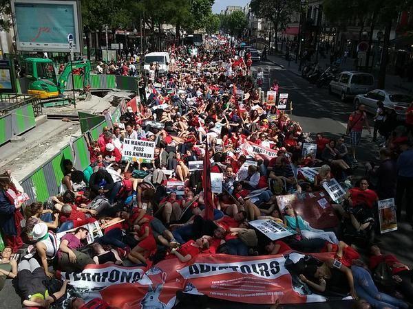 Succès de la marche &quot&#x3B;fermons les abattoirs&quot&#x3B; à Paris