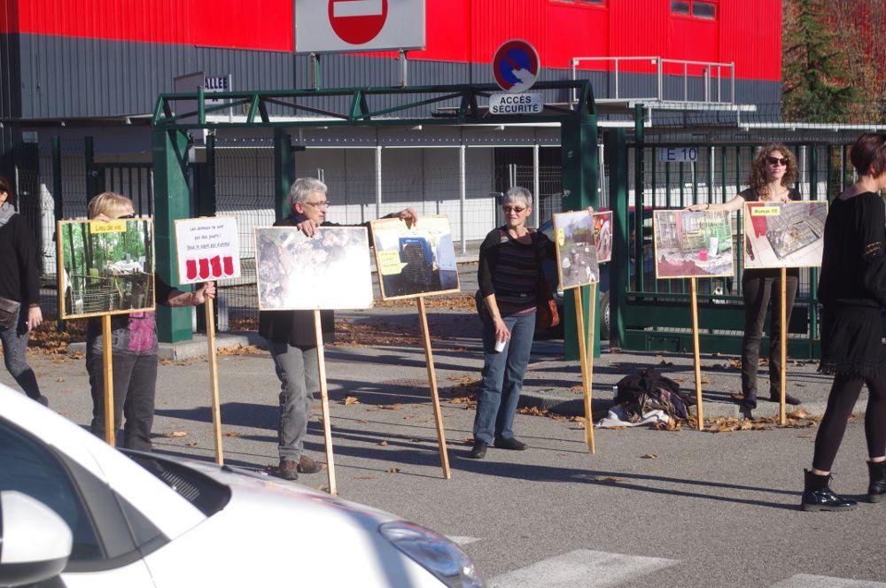 Action au salon du chiot de Chambéry 07 et 08 /11/ 2015