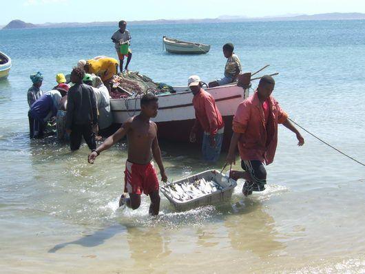 Comme la vidéo ci dessous, cette partie de pêche, je l'ai vécu à Ramena