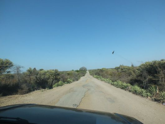 4517) La route côtière, Fort Dauphin – Anakao…