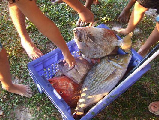 Diaporama chronologique du miam, miam, le poisson du premier avril...