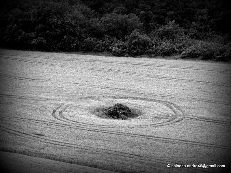 les Chemins de Photos : des empreintes...