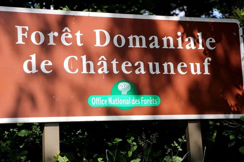 Nouvel album photos du régional UFOLEP de Chateauneuf (28)