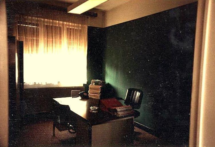 Emménagement à Libramont, mon Bureau, mon atelier, David Hoffman le californien, mon potager et travail sur la forête avec les sangliers