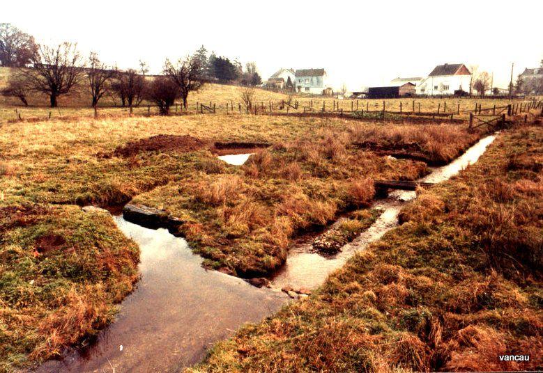 Le ruisseau au départ, puis le creusement d'une dérivation, puis le début d'un petits Bassin qui va devenir un étang de 200 m2. Le tout à la bêche, à la pioche et à la main