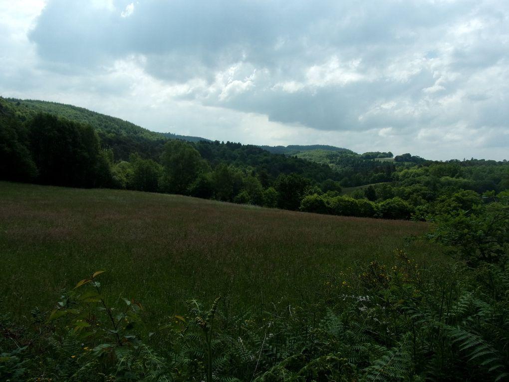 Voyage et randonnées en Corrèze... Circuits de Curemonte et d'Aubazines.