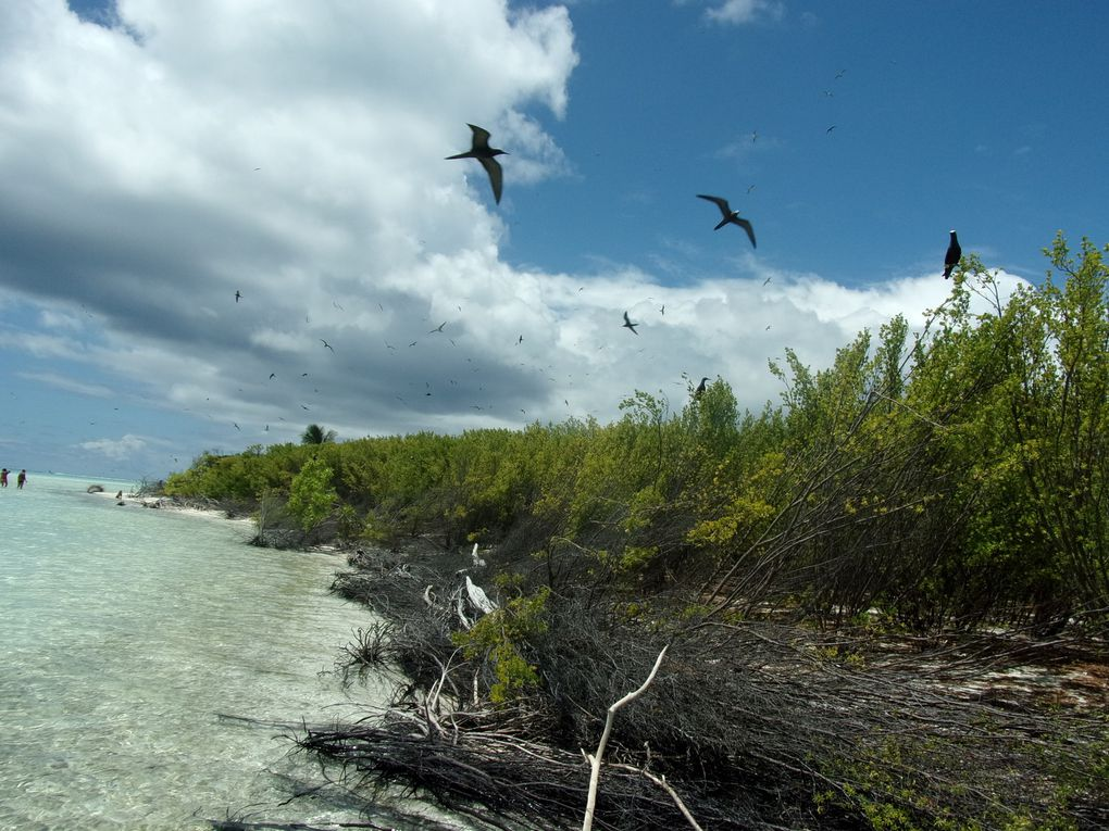 Saga Tahitienne &amp&#x3B; Co...... Les deux premiers jours, Papeete et Tétiaroa.