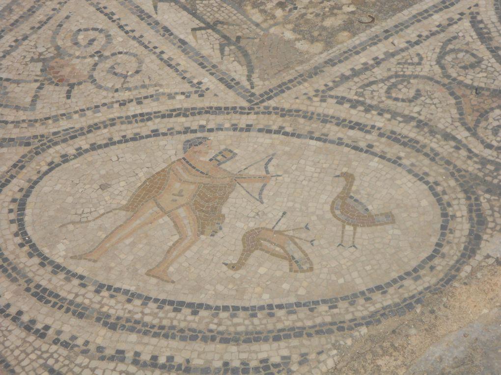 Les mosaïques de Volubilis