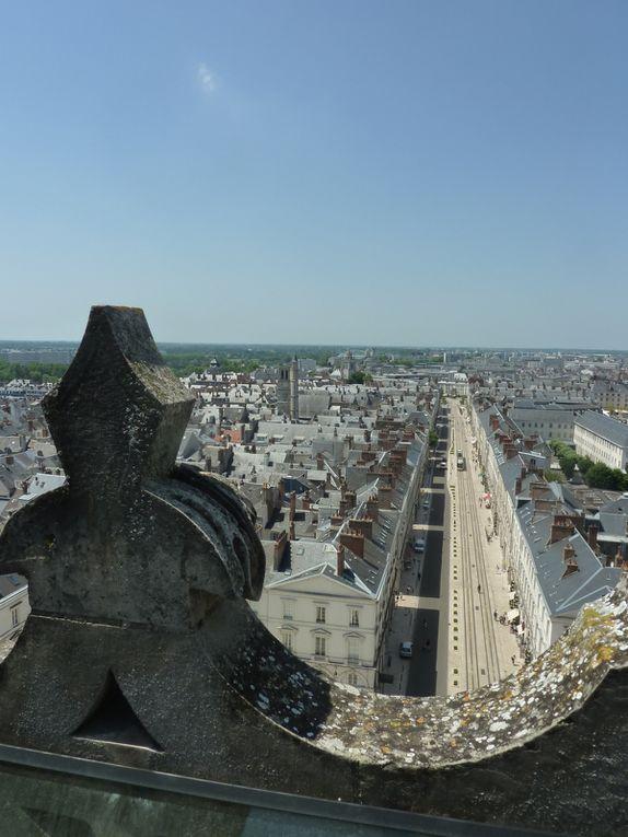 Orléans vue du haut de la cathédrale Sainte Croix