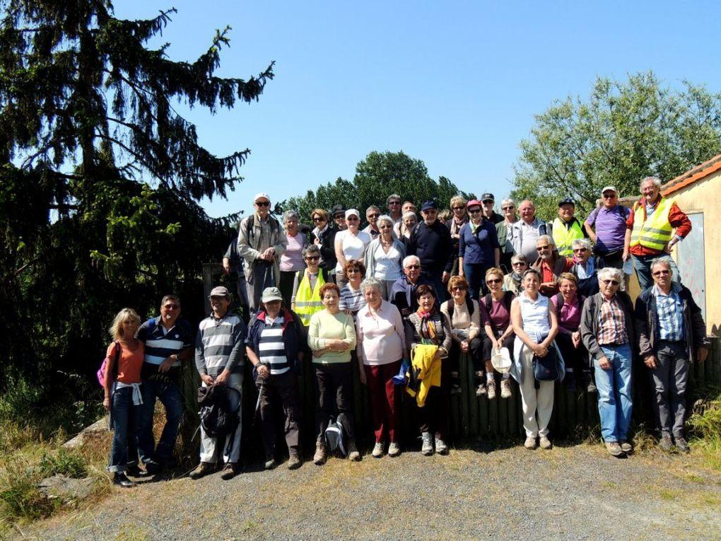 Saint Julien de Concelles pour les &quot&#x3B;10 Km&quot&#x3B;