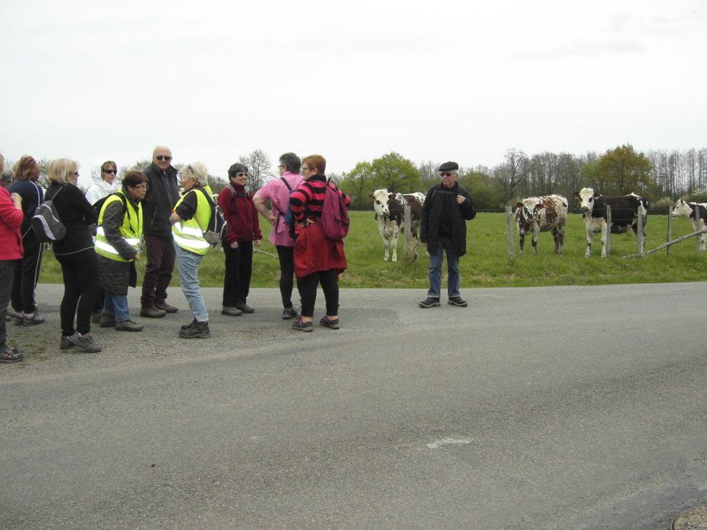 Saint Mars de Coutais pour les &quot&#x3B;6 km&quot&#x3B;