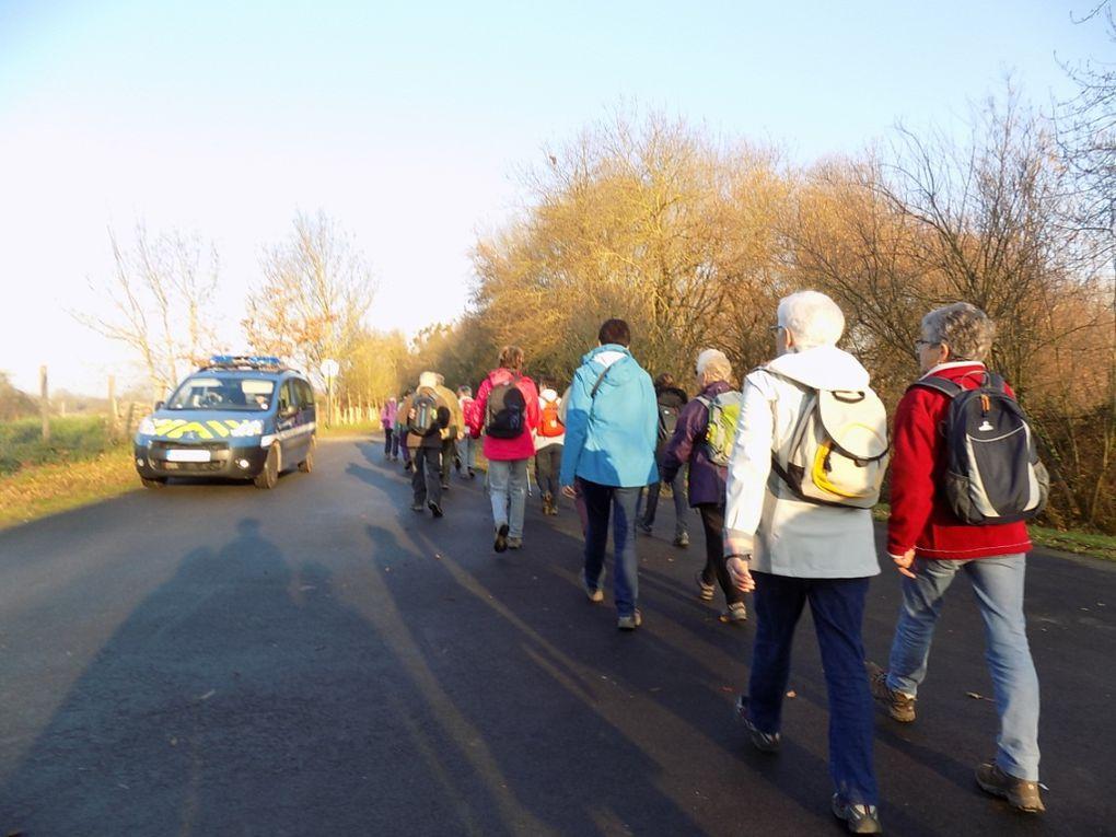 Les bords de la Loire par les &quot&#x3B;12 km&quot&#x3B;